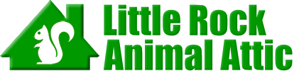 Little Rock Animal Attic